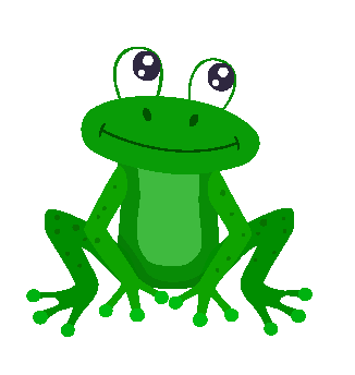 Żabki – 4 LATKI